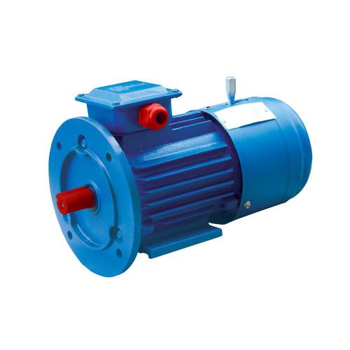 Электродвигатель асинхронный ENERGY MOTORS АИР160 S8